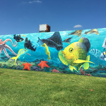 underwater street mural with divers and marine life lake worth lagoon phil foster park