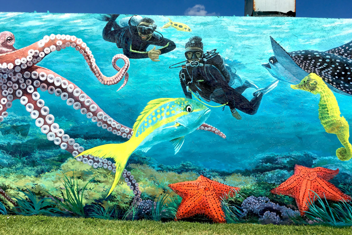 underwater street mural with divers and marine life phil foster park