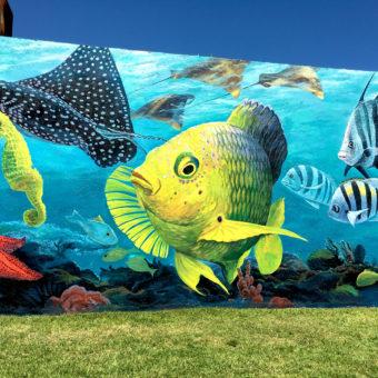 public art mural street mural sea life flounder manta ray spotted eagle ray