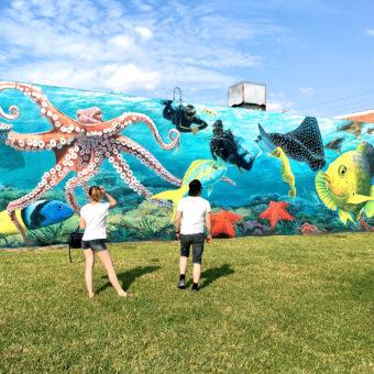 Public art mural divers and sea life sea life lake worth lagoon, octopus, fish, star fish