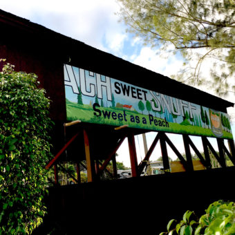 Mural painted anew, mural on wood panels, a mural for the Coral Springs historic covered bridge, peach sweet snuff mural, sweet as a peach mural, historic mural with peach sweet snuff