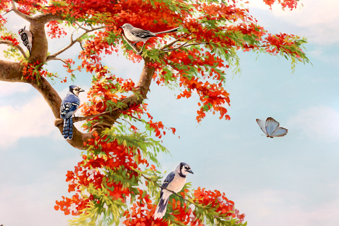 mural on wall with birds sitting on a royal poinciana tree